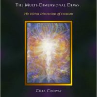 The Multi-Dimensional Devas